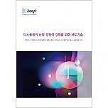 디스플레이 산업 경쟁력 강화를 위한 선도기술
